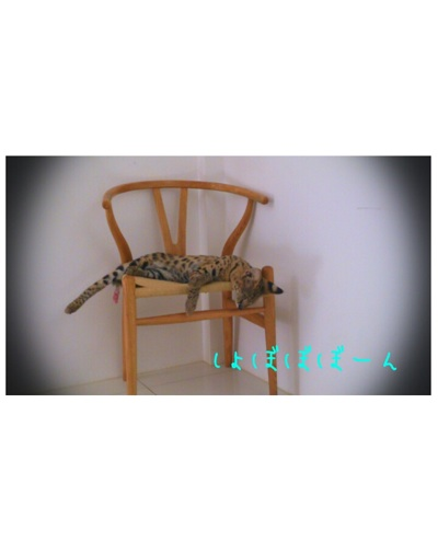 fc2blog_201209051830587f7.jpg