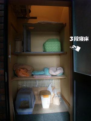 20121013212432c60.jpg