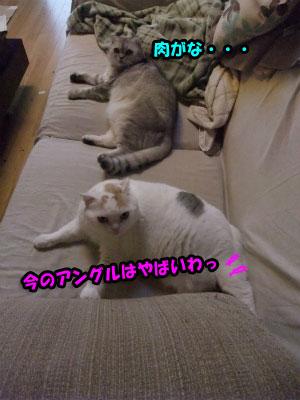 2012110721402215d.jpg