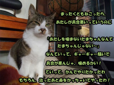 201301081512231ed.jpg