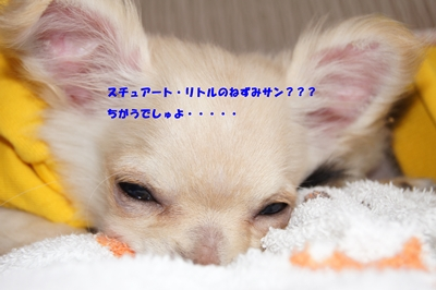 20120601230059cb7.jpg