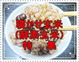 寝かせ玄米(酵素玄米)特集