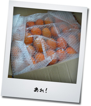 2012110807511490c.jpg
