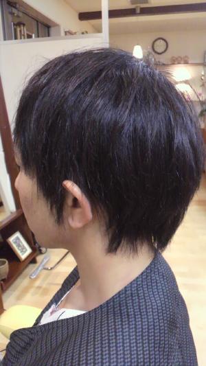 P1021146_convert_20120518105634.jpg
