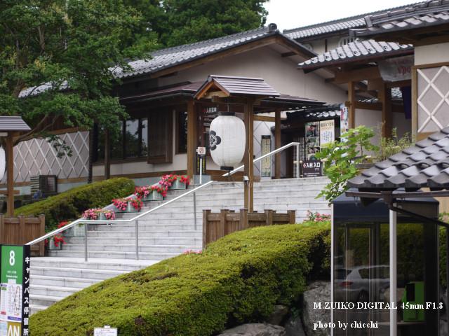 加賀の伝統工芸村「ゆのくにの森」