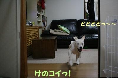 201206082215018ab.jpg
