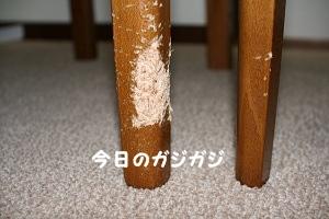 2012062120320370d.jpg