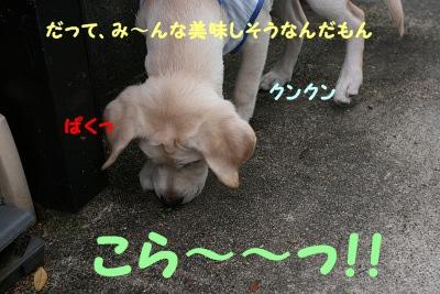 20120628214049a68.jpg