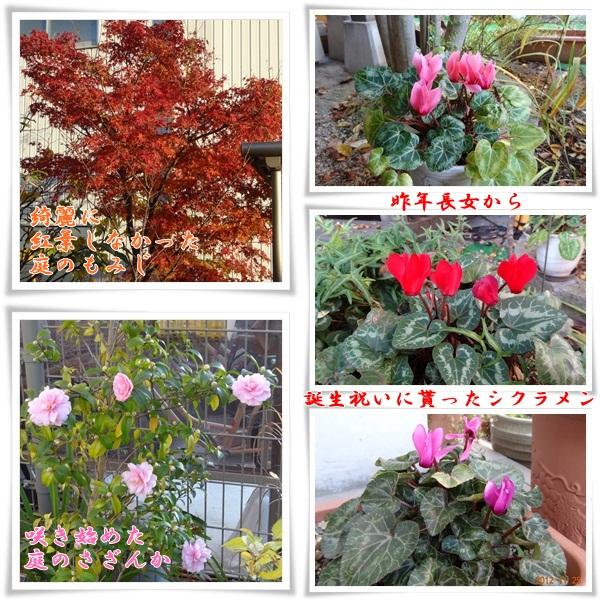 201211251819327b9.jpg
