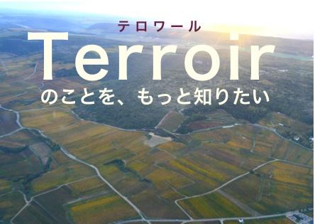 Terroir8.jpg