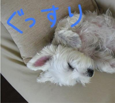 fc2blog_20120912161028607.jpg