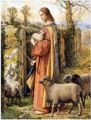 人類の謎を解く鍵は羊飼い??